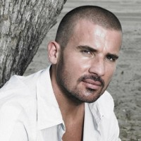 Dominic Purcell Net Worth: know his income source, career, family, early life and more