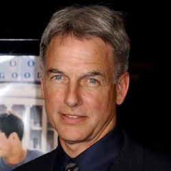 Mark Harmon Net Worth|Wiki: Know his earnings, movies, tvShows, family, wife, children, affairs