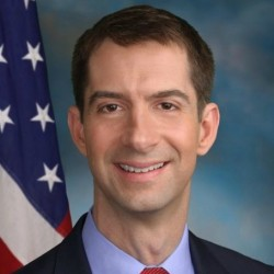 Tom Cotton's Net Worth